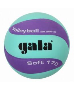 Gala Jeugd-/Minibal Soft 170g Groen/Lila